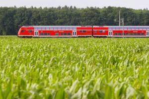 Regionalexpress bei Frankfurt (Oder)