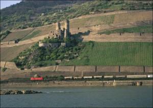 Güterzug am Rhein