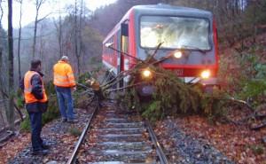 Zugunfall in Kaiersesch