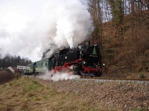 Zug der Weisseritztalbahn in Seifersdorf (2008)